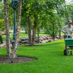 landscaping barrow county